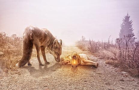 gray wolf beside girl lying on ground