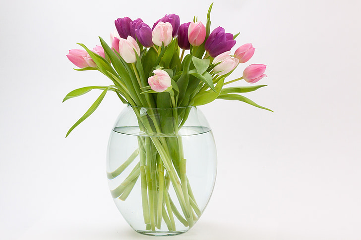 Royalty Free Photo Purple And Pink Flowers Inside Glass Vase With