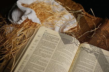 beige printed book on brown textile