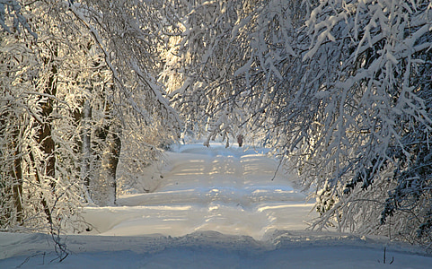 white snow covered road