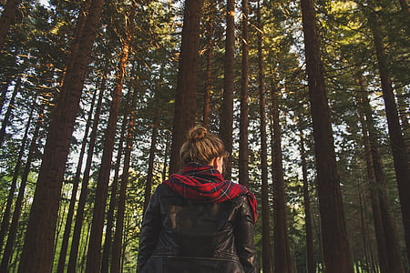 woman in forest during daytime