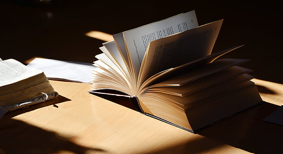 two books on brown wooden surface