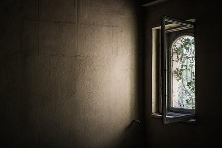 window during daytime