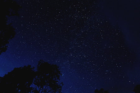stars at the sky during nighttime