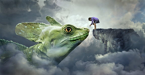 child standing on rock facing chameleon 3D wallpaper
