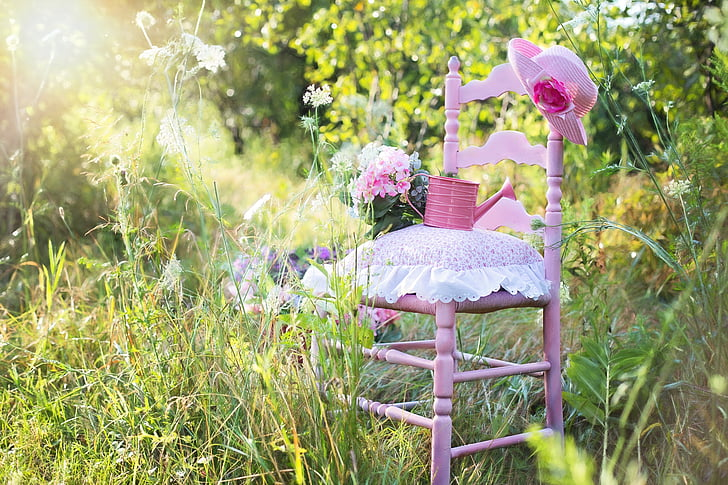 pink wooden armless chair and pink watering can surrounded by green leaf plants at daytime