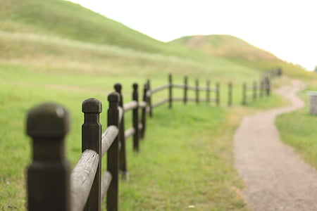 brown wooden fence beside gray road path