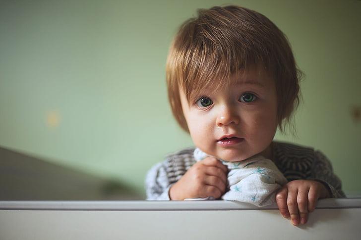 toddler wearing gray coat