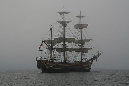 gray sail boat on water