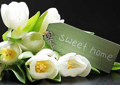 white tulips with sweet hone card labeled bouquet