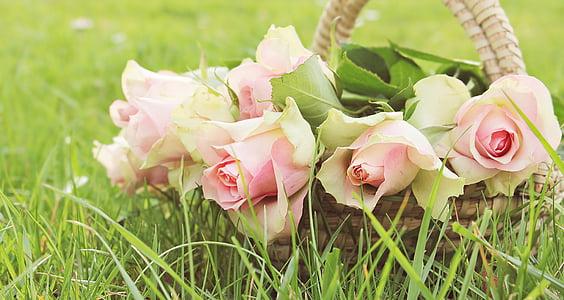 several pink rose flowers in brown wicker basket at daytime