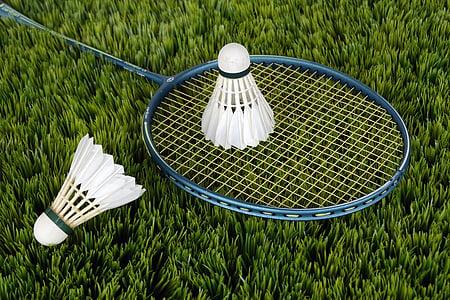 blue badminton racket and white shuttle cocks