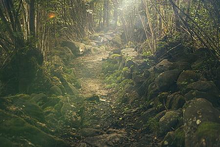 black rocky road