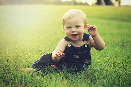 toddler in blue dungaree sitting on green grass field
