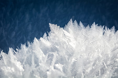 white snowflakes with blue background wallpaper