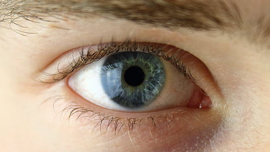 closeup photography of right human eye
