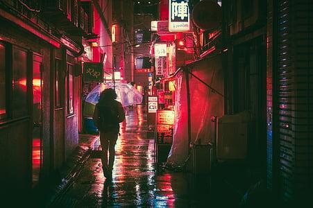 woman walking on street under the umbrella