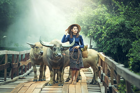 woman wearing blue long-sleeved top standing beside water buffalo on bridge during daytime