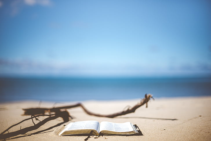 selective focus photo of an opened book near shoreline