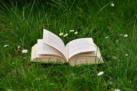 book on green grass during daytime