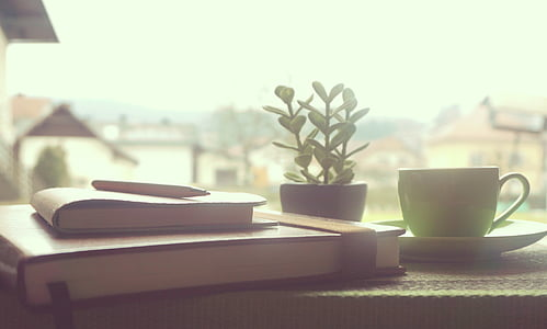 white ceramic teacup beside plant and pile of books