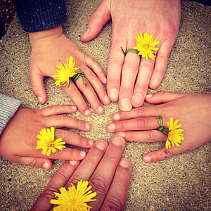 five yellow dandelion rings