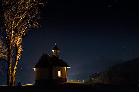 silhouette of castle near tree