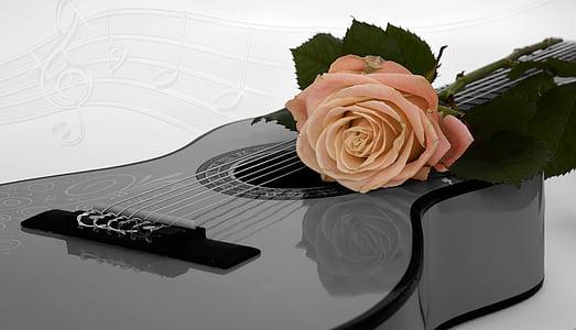 black dreadnought guitar
