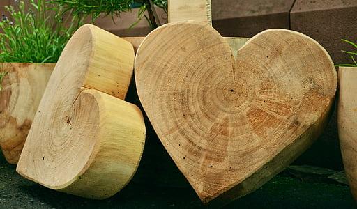 beige wooden heart-shaped tree stumps