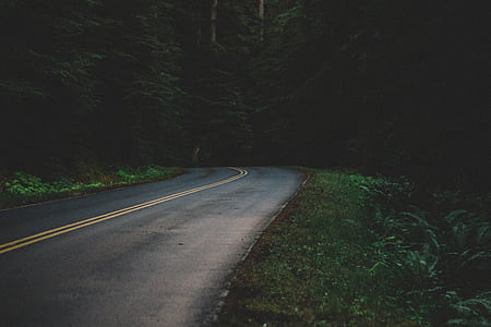low angle photography of road