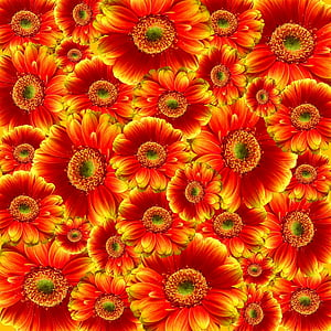 red and yellow flower lot