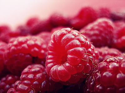 macro shot photography of red raspberry