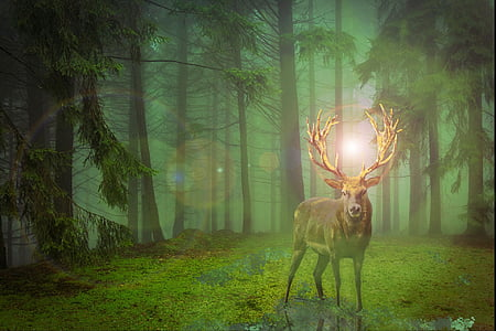 brown stag in forest illustration