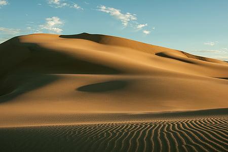 landscape view of desert