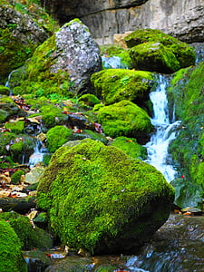 stones with green moss and water during daytime