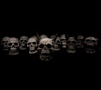 grey skull lot