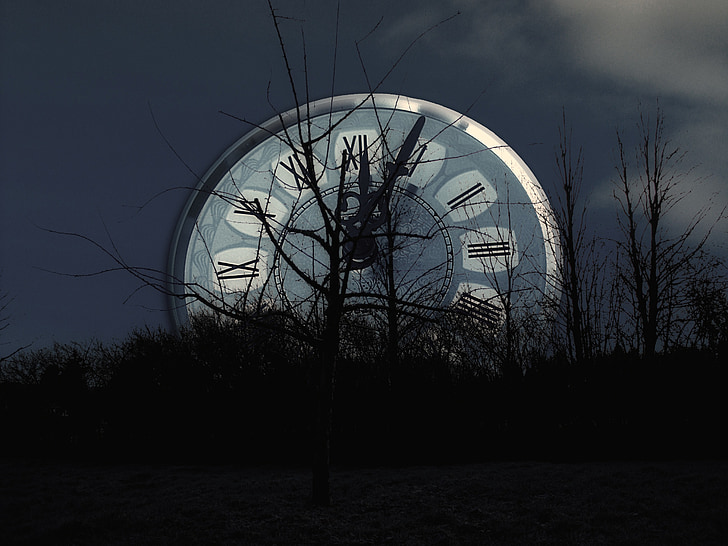 leafless trees against analog clock illustration