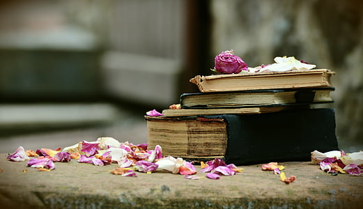 pink petals scattered over pile of 5 books
