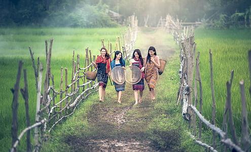 four women walking through rice field carrying brown wicker baskets