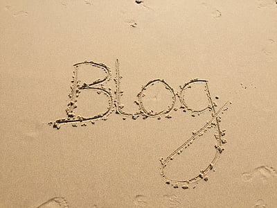 photo of blog on seashore