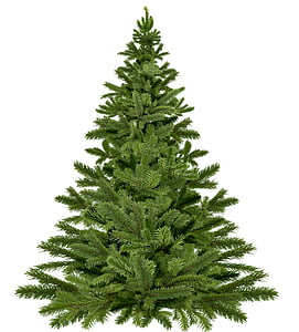 green pre lit tree