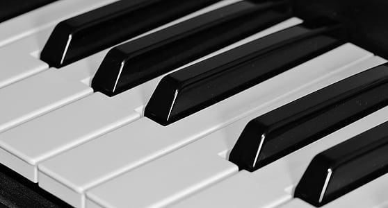 closeup photo of piano key