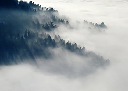 fog covered green mountain