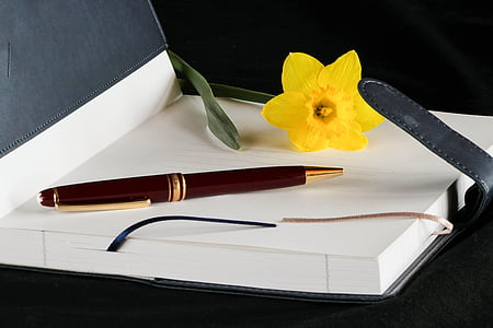 brown and gold-colored retractable pen