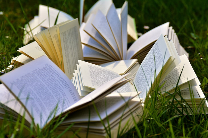 opened book lot above green grasses