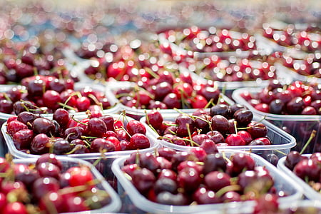 selective focus photography of berry lot