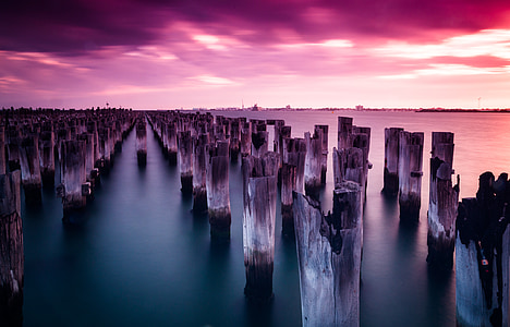 wood poles on body of water