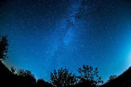 nighttime photo