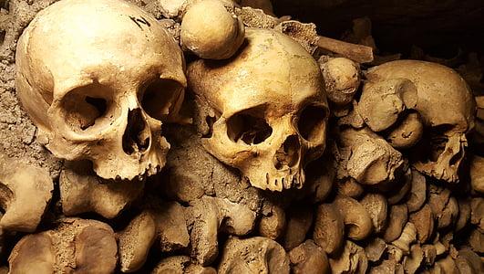 three skulls on wall