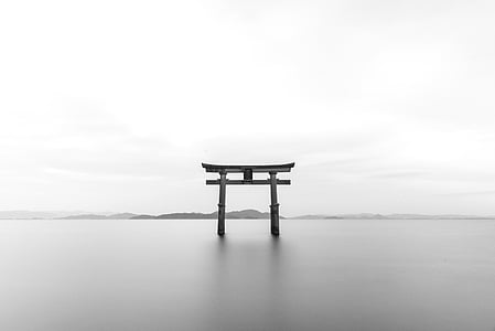 grayscale photography of wooden arche